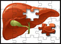 Case study: Fatty liver and pancreatitis combined