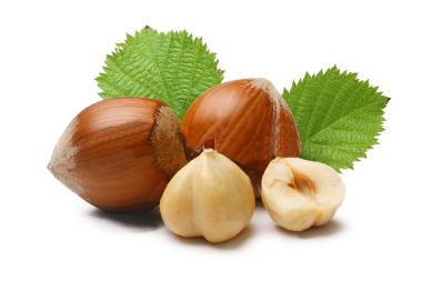 Liver-Doctor-Hazelnut-And-Coconut-Fudge