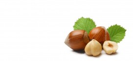 hazelnuts-w