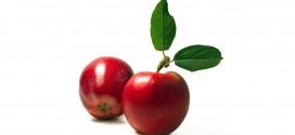 Liver-Doctor-Apple-Pie-Smoothie