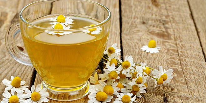 Liver-Doctor-Chamomile-Protects-Thyroid-Gland