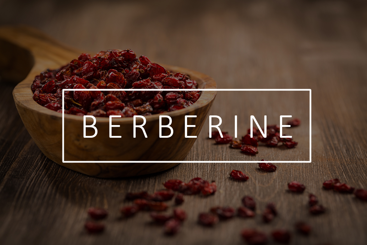 Berberine Helps Treat Polycystic Ovarian Syndrome (PCOS)