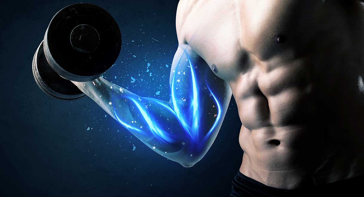 Magnesium Strengthens Muscles And Bones