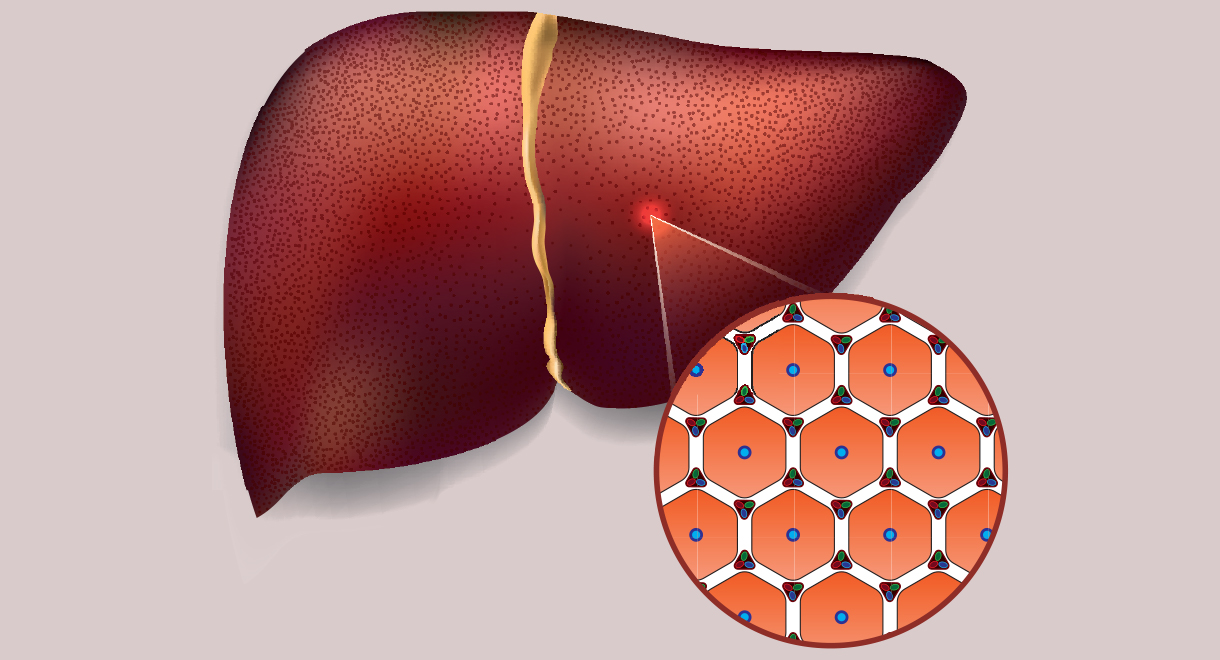 Are Your Liver Cells Dying?